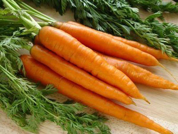 Cambada de cenouras frescas