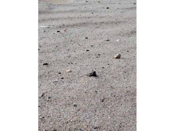Areia e cascalho mix de várzeas.