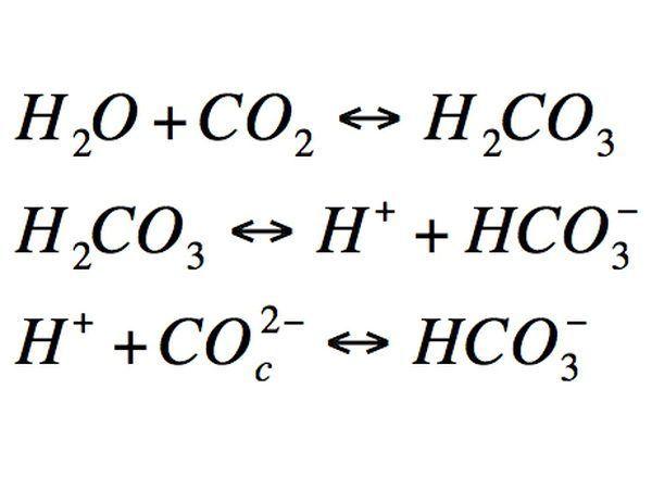 reacção molecular