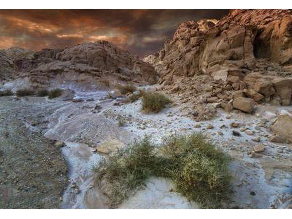 O deserto Negev cobre mais da metade do território em Israel
