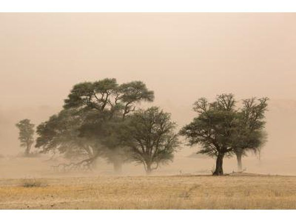 tempestade de poeira grave no deserto de Kalahari, África do Sul